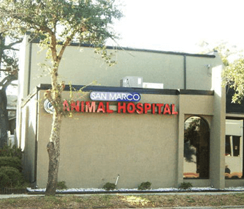 San Marco Animal Hospital Outside
