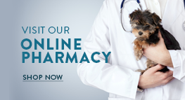 Online Pharmacy banner of San Marco Animal Hospital