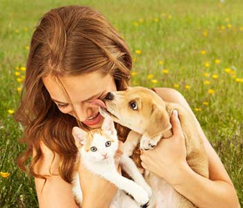 cute young puppy licking the face of a pretty young girl as she is laughing
