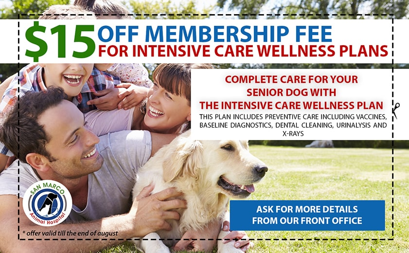 15 Off membership fee at San Marco Vet