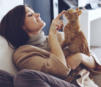 Veterinary Care Jacksonville FL area