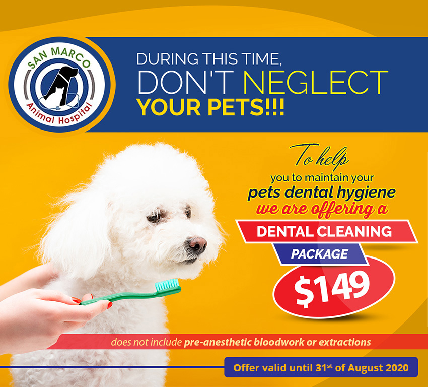 Dental cleaning package just for $149