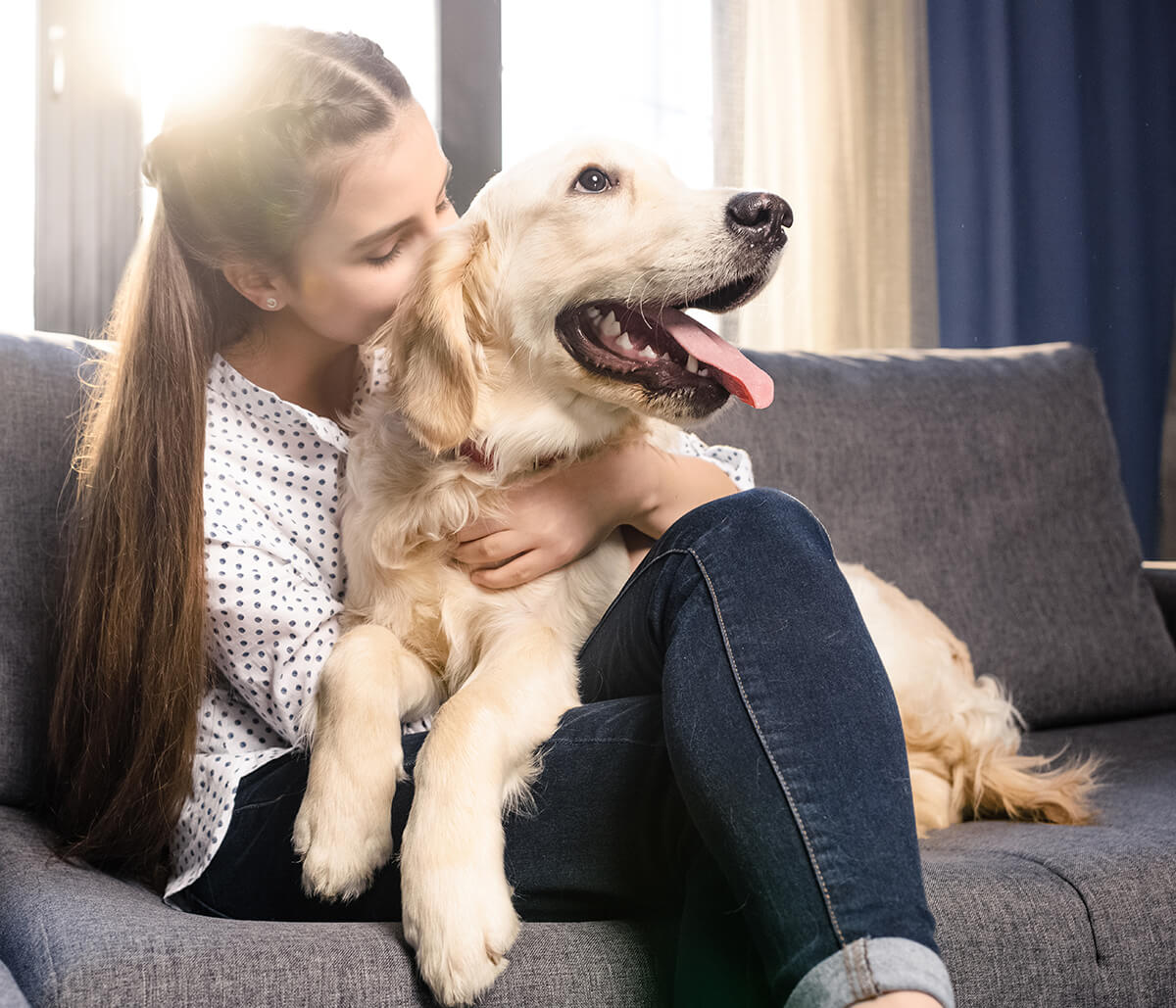 Dog Skin Rash Treatment Starts with Exceptional Diagnostics at Our Jacksonville, FL Area Office