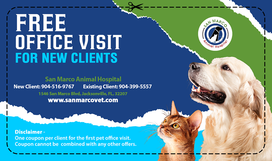 Free First Visit Offer Animal Clinic in Jacksonville